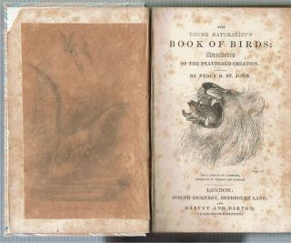 Young Naturalist's Book of Birds : Anecdotes of the Feathered Creation