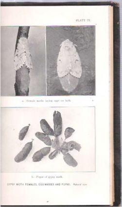 First through Sixth Report of the State Entomologist of Connecticut : For the Year 1901-1906